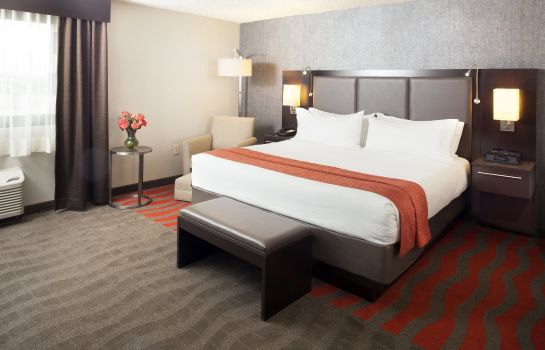 Zimmer Holiday Inn NEWARK AIRPORT
