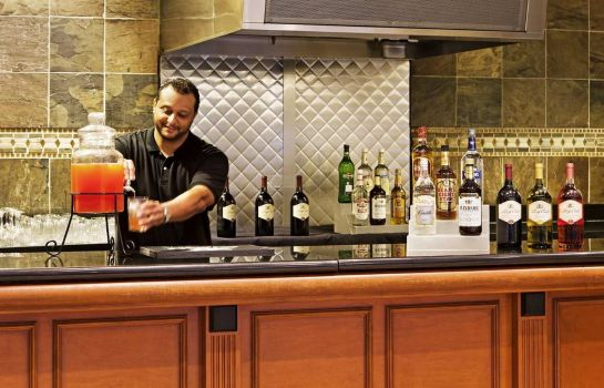 Hotel-Bar Embassy Suites by Hilton Nashville at Vanderbilt