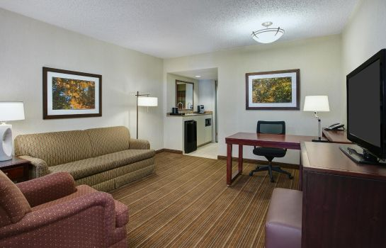 Suite Embassy Suites by Hilton Parsippany