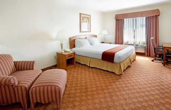 Chambre Holiday Inn Express & Suites BROWNSVILLE