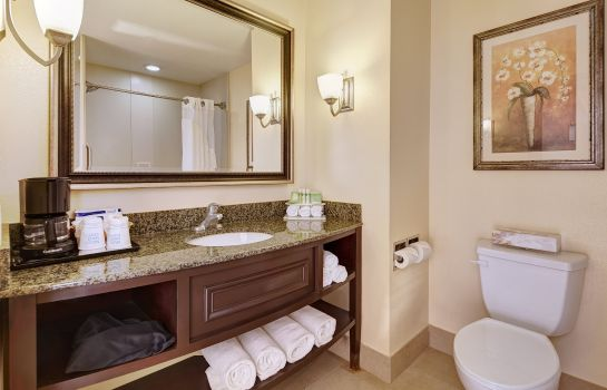 Info Holiday Inn Express & Suites SAN DIEGO-SORRENTO VALLEY