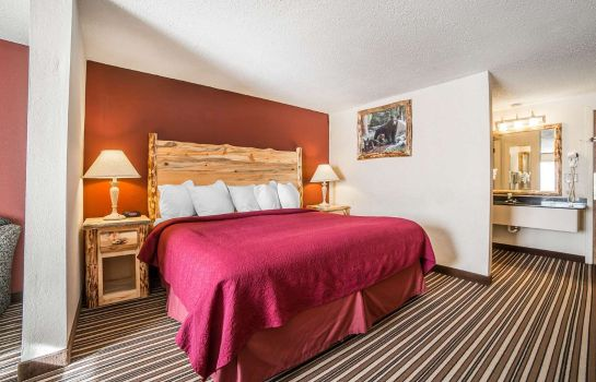 Suite Quality Inn & Suites Butte