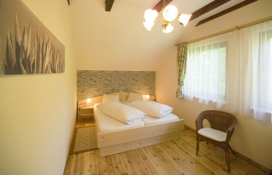 Double room (standard) Fischinger Pension
