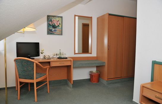Single room (standard) Friesen