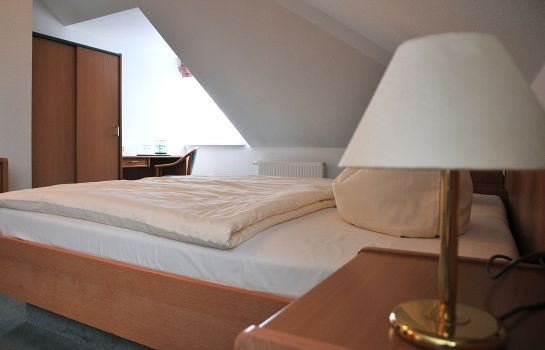 Double room (standard) Friesen