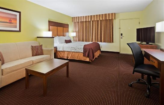 Zimmer BEST WESTERN PLUS HOLLAND INN