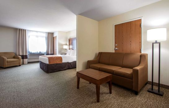 Suite Comfort Suites Johnson Creek Conference Center
