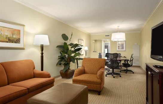 Suite Embassy Suites by Hilton Tampa Downtown Convention Center
