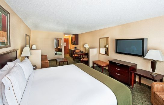Zimmer Holiday Inn Express & Suites EL PASO I-10 EAST