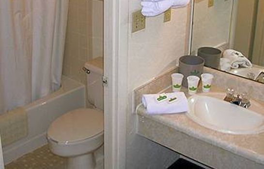 Bathroom Masters Inn Augusta - Washington Road