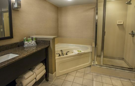 Suite Holiday Inn Express & Suites BUFFALO-AIRPORT