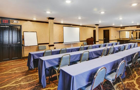 Conference room Comfort Inn Grapevine