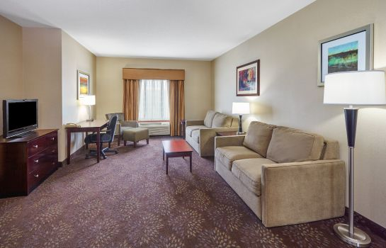 Zimmer Holiday Inn Express & Suites GRAND RAPIDS - SOUTH
