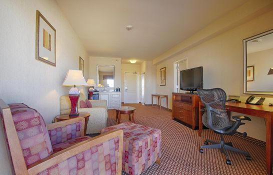 Suite Hilton Garden Inn Las Vegas Strip South