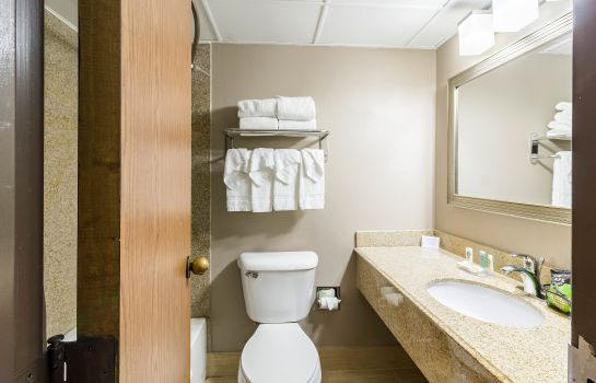 Habitación Quality Inn & Suites Arden Hills - Saint Paul North