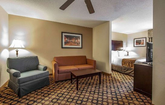 Tweepersoonskamer (comfort) Quality Suites I-240 East-Airport