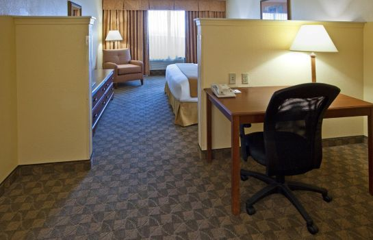 Suite Holiday Inn Express & Suites AUSTIN SW - SUNSET VALLEY
