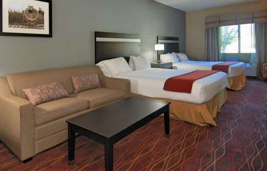 Room Holiday Inn Express & Suites AUSTIN SW - SUNSET VALLEY