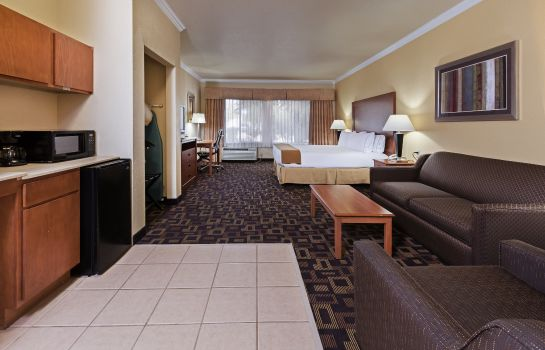 Zimmer Holiday Inn Express & Suites AUSTIN-(NW) HWY 620 & 183