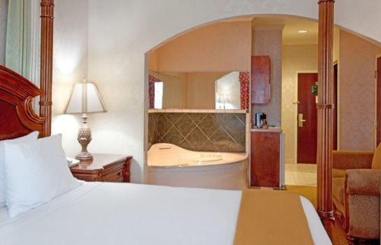 Suite Holiday Inn Express & Suites SUMTER
