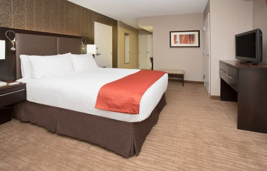 Zimmer Holiday Inn DENVER-CHERRY CREEK
