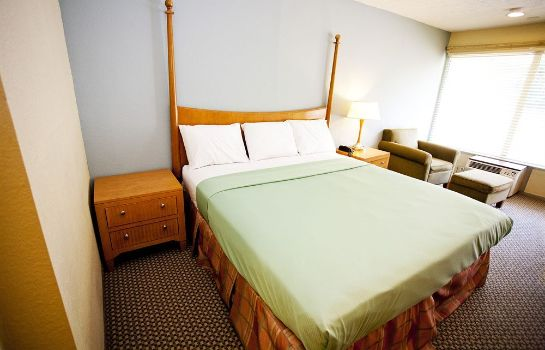 Chambre individuelle (confort) Star City Inn & Suites
