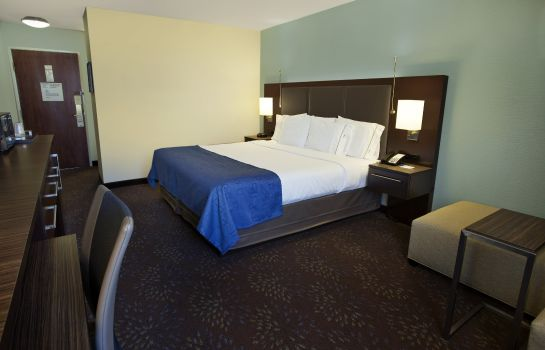 Zimmer Holiday Inn Express ROMULUS / DETROIT AIRPORT