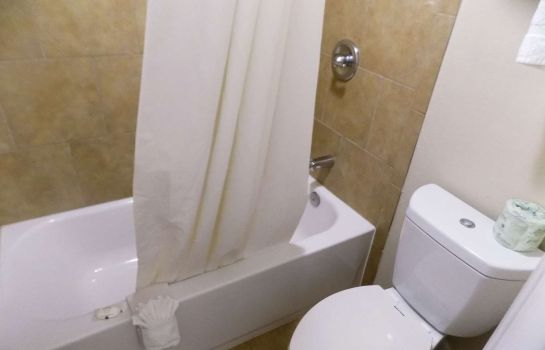 Room Quality Inn DFW - Airport