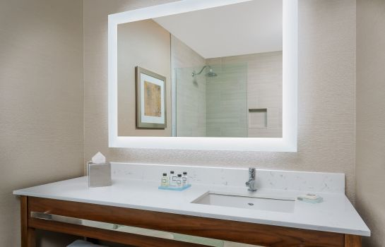 Bagno in camera VALLEY FORGE CASINO RESORT