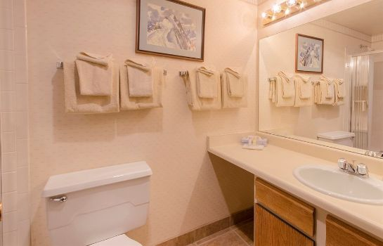 Bagno in camera Storm Meadows Club Condominiums by Mountain Resorts