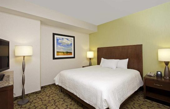 Suite Hilton Garden Inn Indianapolis Downtown