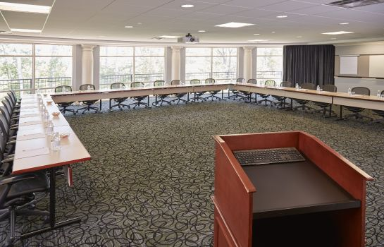 Conference room Rizzo Center
