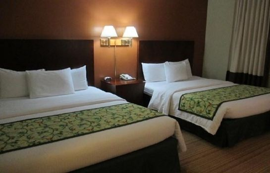 Kamers RED CARPET INN AND SUITES-PLYMOUTH