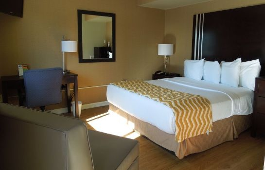 Standaardkamer Albany Airport Cocca's Inn & Suites Wolf Rd
