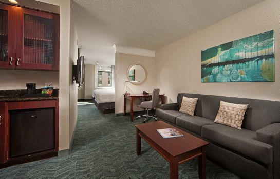 Chambre SpringHill Suites Baltimore Downtown/Inner Harbor