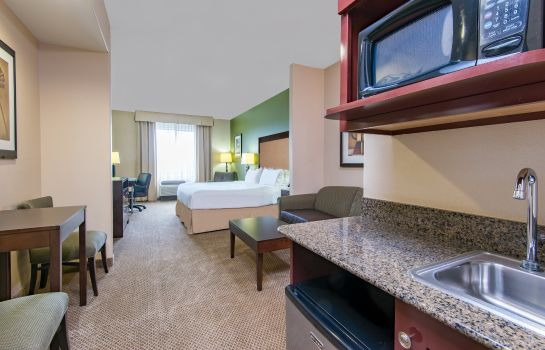 Suite Holiday Inn Express & Suites PHOENIX-GLENDALE