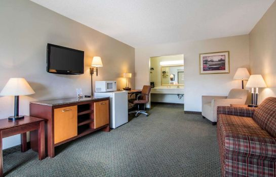 Tweepersoonskamer (comfort) Econo Lodge Inn & Suites Conference Center