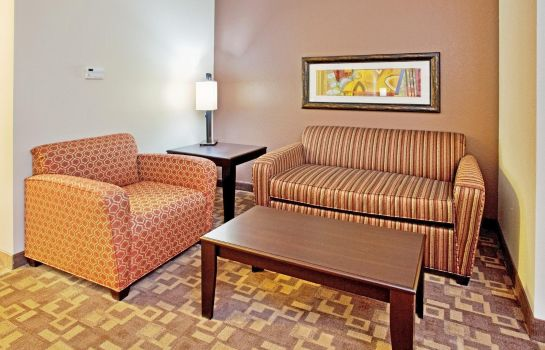 Suite Holiday Inn Express & Suites LINCOLN AIRPORT