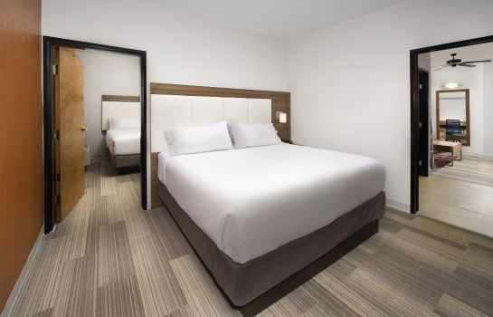 Zimmer Holiday Inn Express & Suites SAN ANTONIO-DTWN MARKET AREA