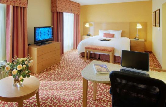 Suite Hampton Inn - Suites Raleigh-Durham Airport-Brier Creek