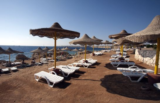Beach Sharm Club Resort