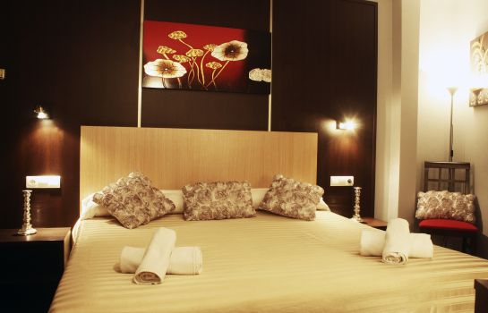 Double room (standard) Plaza