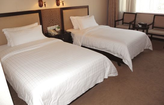 Double room (standard) South Union Hotel