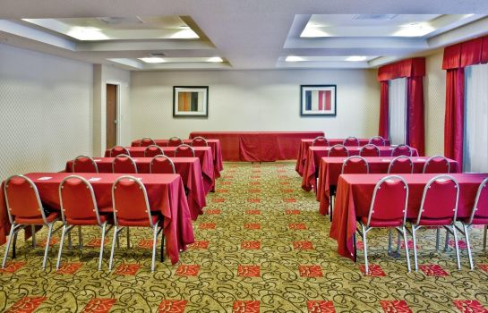 Congresruimte Holiday Inn Express & Suites ORLANDO SOUTH-DAVENPORT