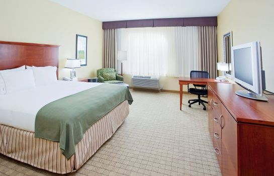 Zimmer Holiday Inn Express & Suites DENVER AIRPORT