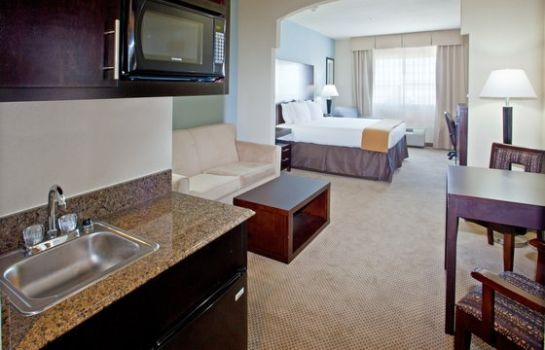 Suite Holiday Inn Express & Suites BEAUMONT NW PARKDALE MALL