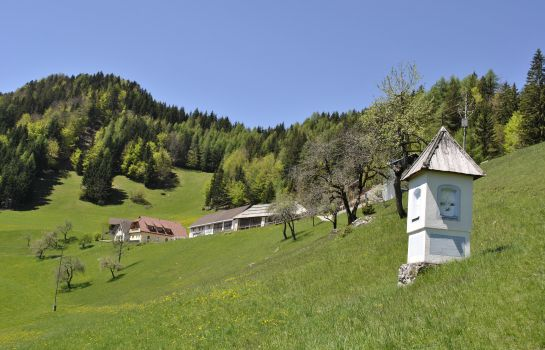 Imagen BergPension Lausegger