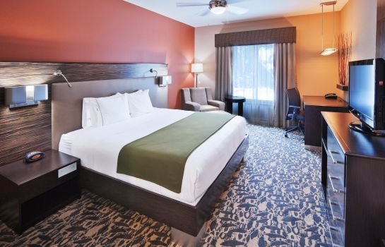 Zimmer Holiday Inn Express & Suites NORTH DALLAS AT PRESTON