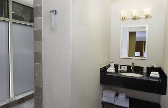 Suite Fairfield Inn & Suites New York Manhattan/Fifth Avenue