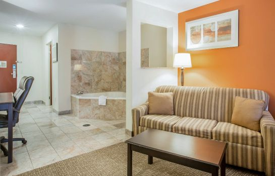 Room Comfort Suites Atlanta Airport
